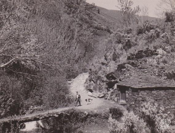 Paisaje O Caurel, 1958-1962, as fotos do carlos diaz gallego