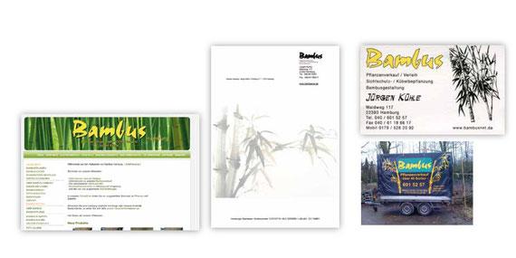BAMBUS - Immergrün - Corporate Design - neues harmonisches Erscehinungsbild - DesignKis - 2009
