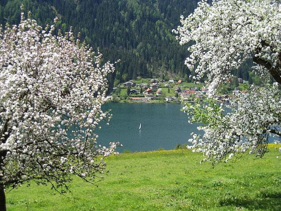 Am Weg zurück hinunter nach Feld am See bietet sich dieser herrliche Blick auf den Brennsee