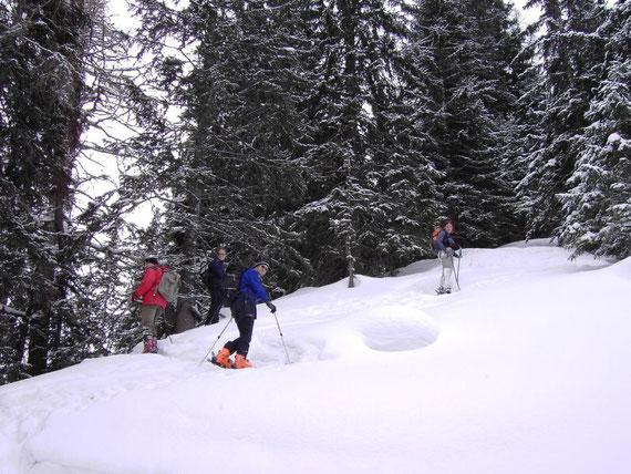 In Spitzenkehren geht es von Kälberhütte (1442m) Richtung Gipfel