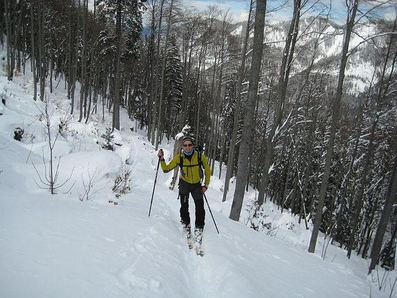 Aufstieg durch den Wald in rund 1300m Höhe