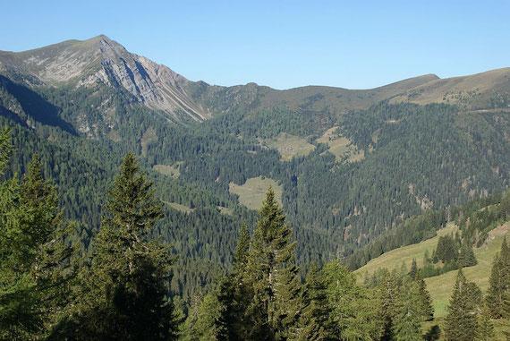 Blick von der Gusenalm zu den Siflitzer Hütten (Bildmitte) und dem Latschur (links)