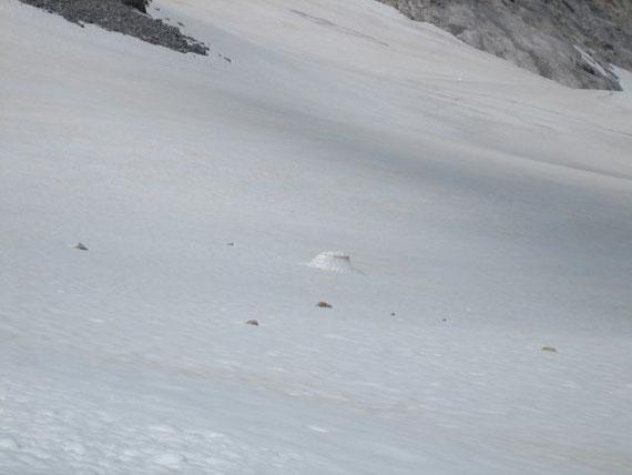 Ein Schneetisch am Eisscheitel