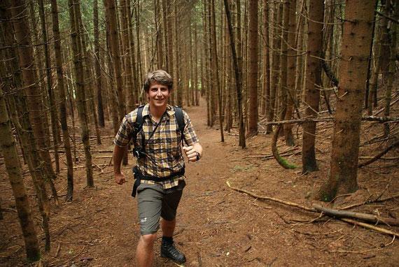 Aufstieg am Steig im Wald