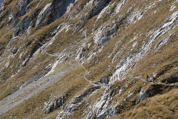 Beim Abstieg vom Köfeletörl quert man die steilen Südhänge des Reißkofels