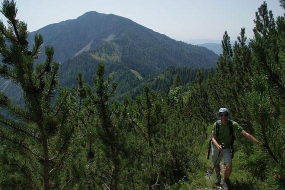 Aufstieg am Jägersteig, im Hintergrund wieder der Große Frauenkogel