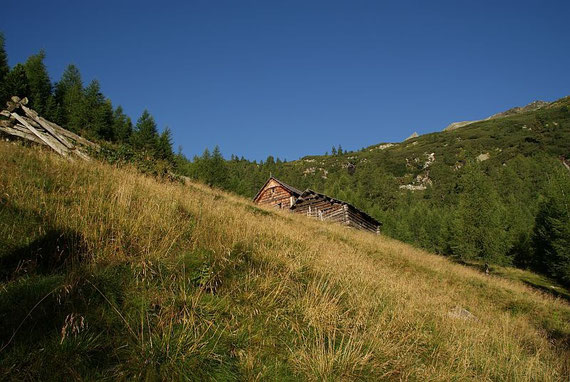 Bei der Aichholzer Hütte