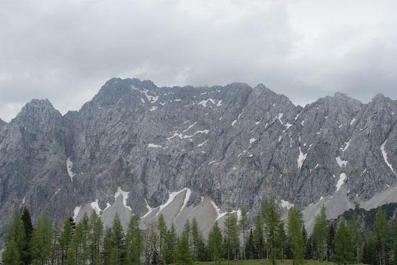 Die Vertatscha Nordwand von der Ogrisalm aus