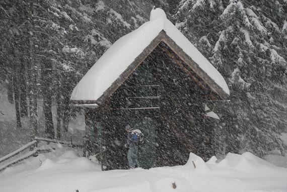 Bei der Bärenhütte an der alten Schipiste. Innerhalb 1h gab es >5cm Neuschnee