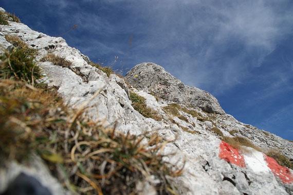 Die letzten Meter zum markanten Gipfelgrat