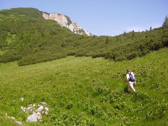 In etwa 1900 mit dem Gipfelkreuz schon in Sichtweite