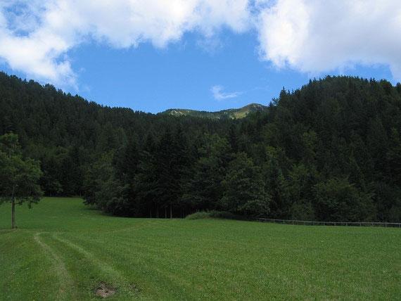 Aufstieg über die Wiese im unteren Teil, im Hintergrund ist schon der Gipfel zu erkennen