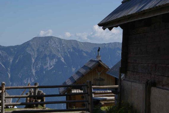 Poludniger Alm, im Hintergrund die Gailtaler Alpen