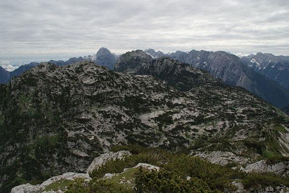 Der Weiterweg führt über die Karsthochfläche, im Hintergrund der Mangart