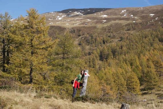Bei der Verebnung in rund 1800m, im Hintergrund der Gipfel