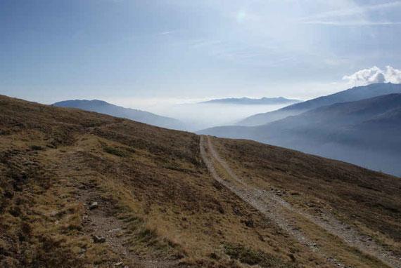 Beim Weg in knapp über 2000m; Blick nach Süden zur Latschurgruppe