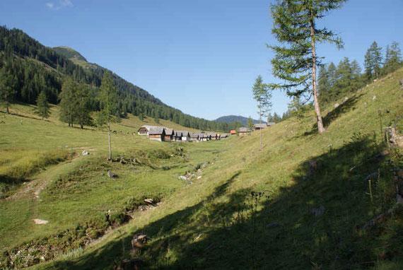 Die Dellacher Alm, links der Gipfel