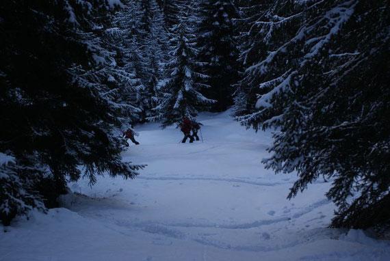 Über eine Schneiße kürzen wir den Aufstieg entlang des Weges etwas ab