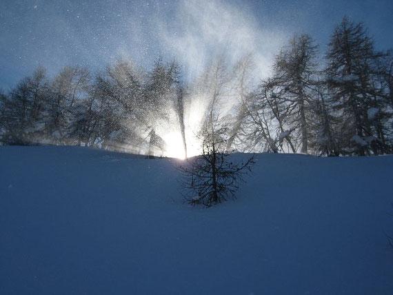 Aufgewirbelter Schnee glitzert in der Sonne