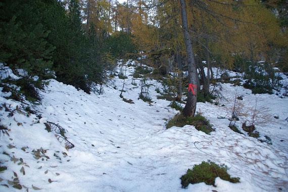 """Die """"Pfeilmarkierungen"""" am Steiglein zum Gipfel, mittlerweile ist der Steig mit rot-weiß-roten Markierungen versehen"""