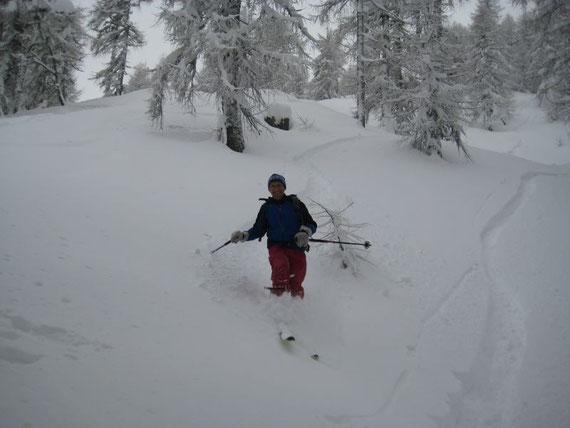 Abfahrt durch den Lärchenwald, Schneehöhe am 6.12.2008 >1m!