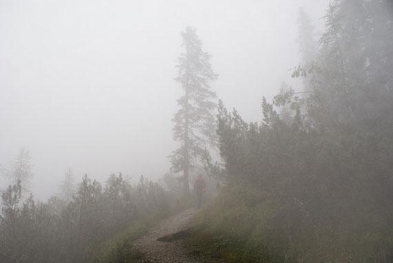 Im Nebel geht es durch den Wald aufwärts