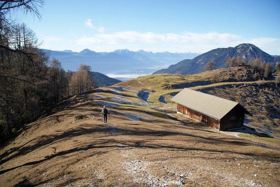 Bei der Wertschacher Alm, im Hintergrund wieder die Karnischen Alpen