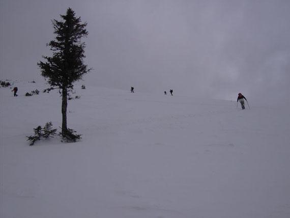Am Gipfelhang; Entlastungsabstände um die Gefahr einer Schneebrettauslösung zu minimieren
