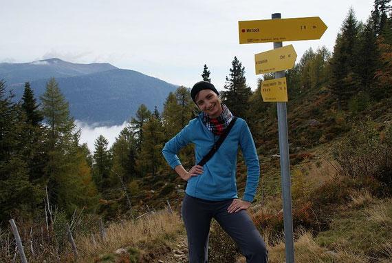 Beim Wegweiser in rund 1800m, im Hintergrund der Wöllaner Nock