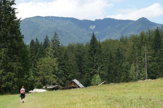 Bei der Brunarica pri Igotu, im Hintergrund die Woschza