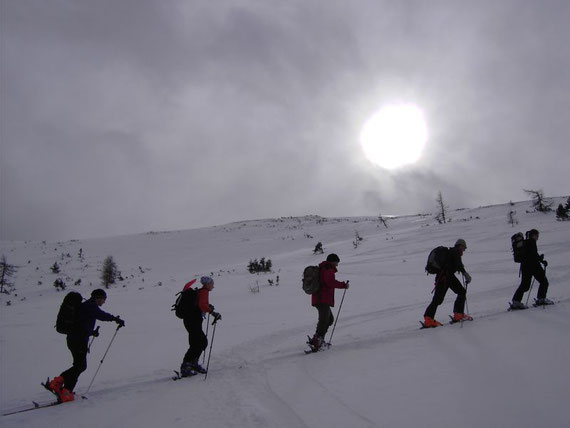 In etwa 1850m Seehöhe am Gipfelhang