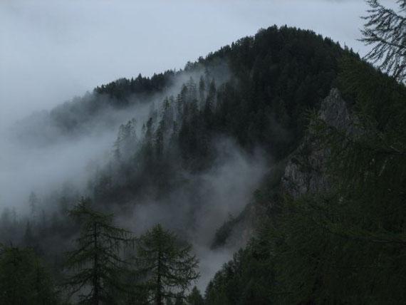 Beim Aufstieg knapp nach der Zollhütte