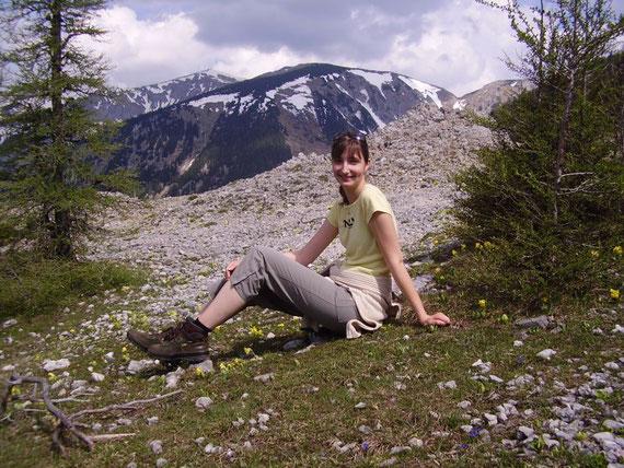 Blumenwiese unterhalb des Gipfels, im Hintergrund der Schneeberg (2076m)