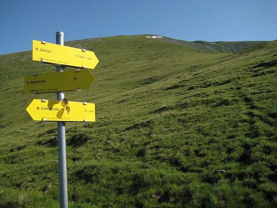 Knapp bevor man in rund 2000m auf den markanten Rücken gelangt öffnet sich bereits der Blick zur langgezogenen Gipfelflanke