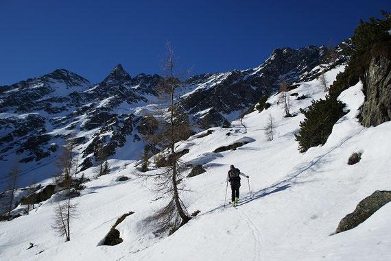 Im Aufstieg ins kleine Hochtal (südlich vom Wangenitzbach)