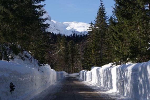 Fahrt zum Sella Nevea, gewaltige Schneewände schränken im Winter 2008/09 die Sicht ein