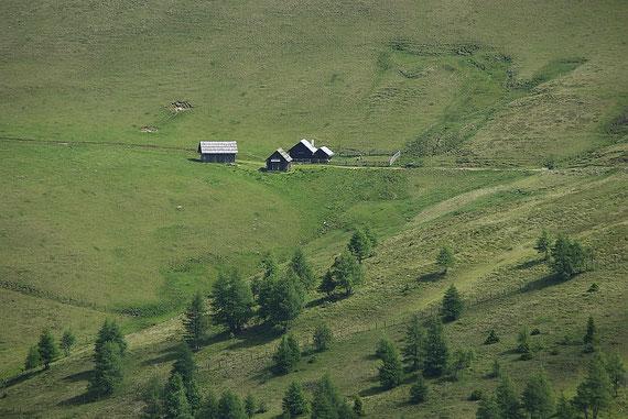 Eine der vielen kleinen Almen auf der Nordseite des Langnock