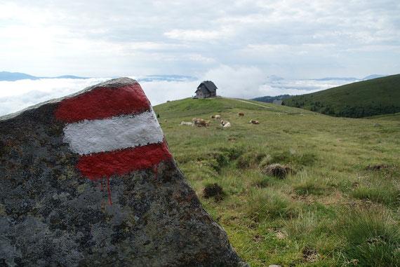 Beim Aufstieg von der Wolfsbgerer Hütte zur Ladinger Spitze der Blick zurück