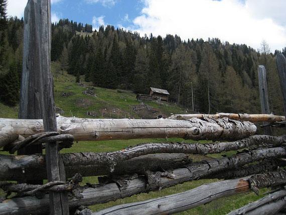 Kurz vor der Feldpannalm kann man eine alte Zaunbauweise bewundern