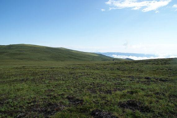 """Die """"endlose"""" Weite der Saualm; rechts der Bildmitte ganz klein die Wolfsberger Hütte"""