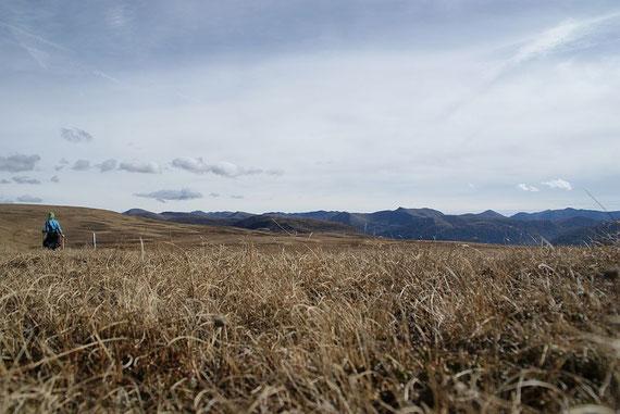 Im Oktober sind die Almwiesen am Schereck schon braun, hier der Blick zum Großen Königstuhl