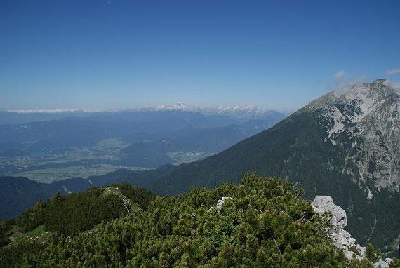 Am Horizont die Julischen Alpen, rechts der Hochstuhl
