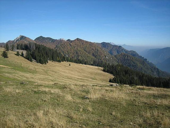 Herrliche Almwiesen laden zum Verweilen ein. Der Blick von der Woschza nach Osten. Knapp links der Bildmitte zeigt sich ganz zaghaft der Gipfelkamm des Mittagskogels (2143m)
