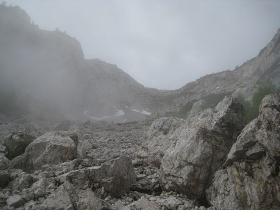 Der oberste Bereich des Alpenlahners