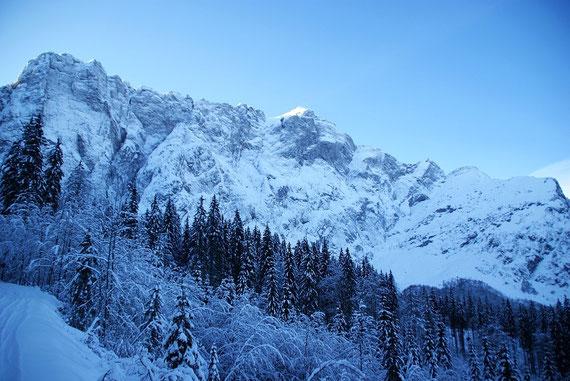 Beim Aufstieg hat man immer wieder die gewaltige Nordwand im Blickfeld; links Venuza und Mitte Mangart