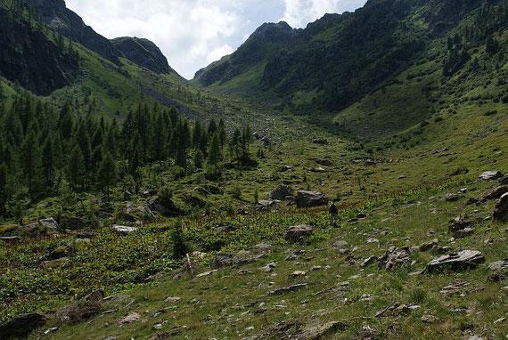 Das Tal hinauf zum Schönjöchl