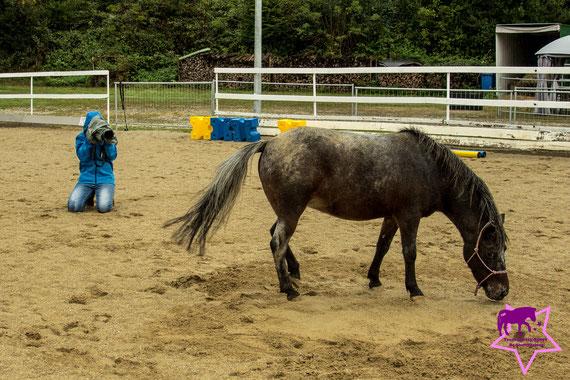 Fotoshooting mit Pferd, Kleine Reiter ganz groß - so lernen Kinder das Pfede-Abc, Pferdeflüsterei