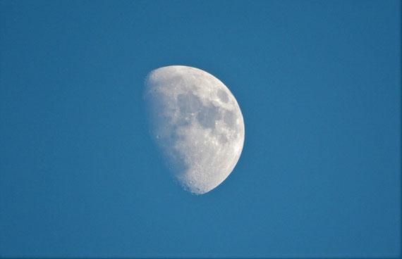 """Wer weiß, was der Mond alles transformieren kann... (Foto: pixabay.com / """"Vlog_nature"""")"""