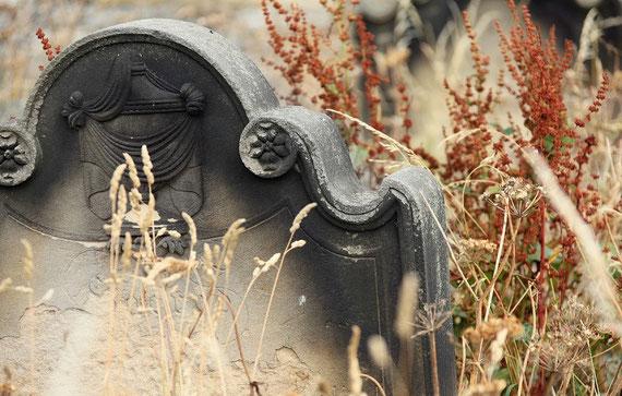 """Verstorbene sind höchst selten bei ihren Gräbern... (Foto: pixabay.de / """"PublicDomainPictures"""")"""