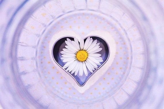 Foto: pixabay.com - vielen Dank an Michaela / Kranich17 :-)